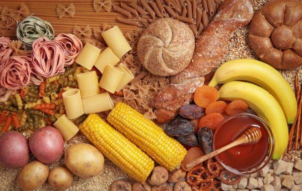Fat Decimator System Diet